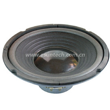 Loudspeaker YD250-01-6.5F100U 10 Inch Paper Cone Bass Speaker Drivers, High Quality Woofer for Sale-ESUTECH